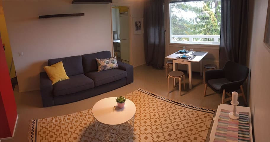 Comfortable home to stay for two or three