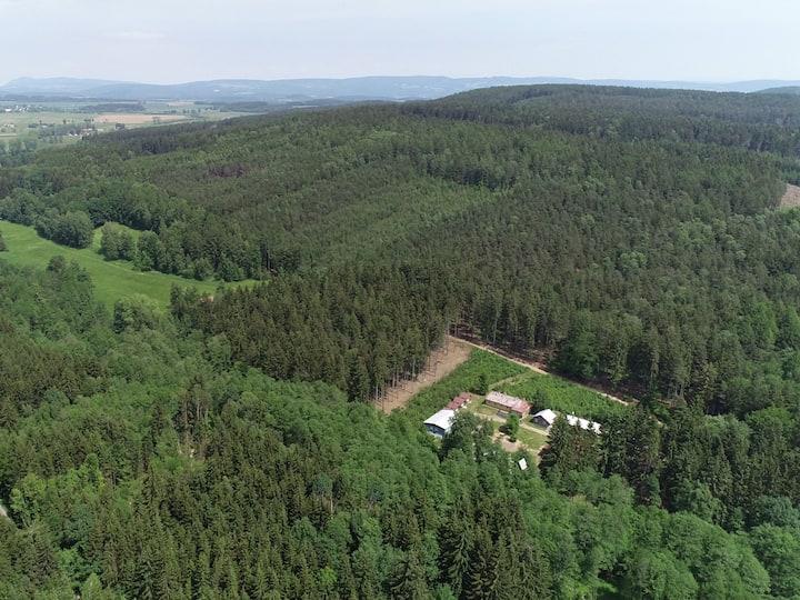 Podkrkonoší - samota uprostřed lesů