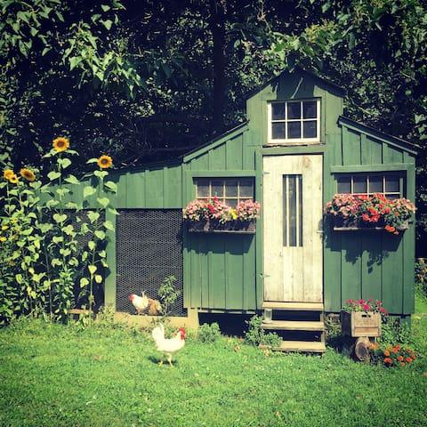 The chicken coop