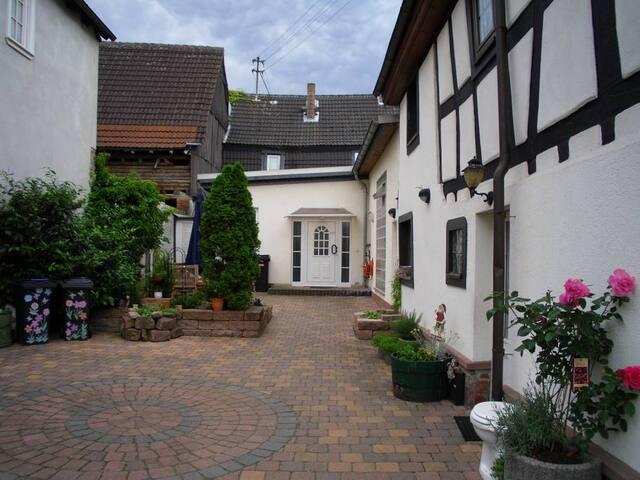 2,5 ZW zw Darmstadt und Frankfurt