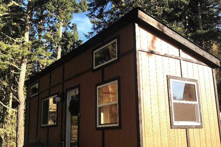 The Tiny Cabin: A Sooke Forest Retreat