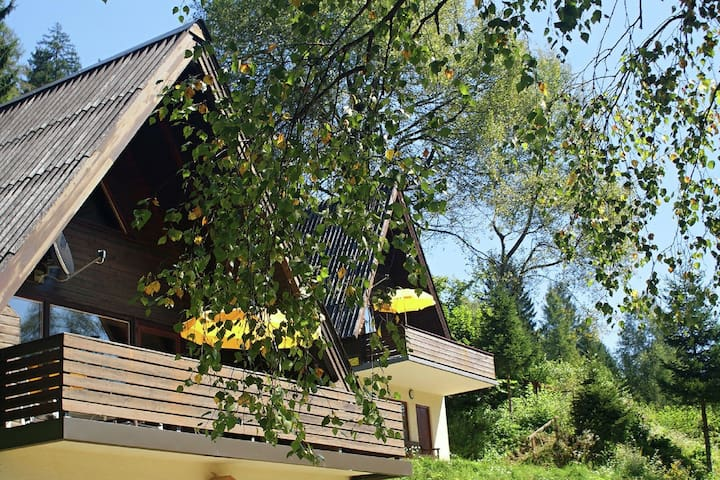 Small pet-friendly holiday park with free 'Nassfeld+' card in High Season.