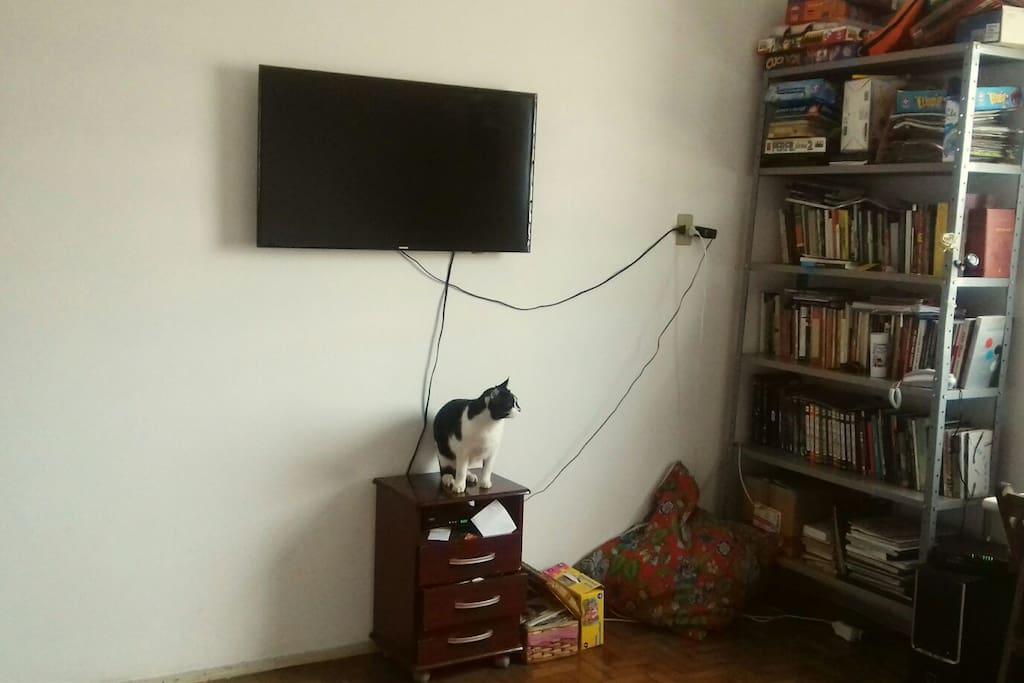 TVa Cabo (todos os canais), livros e gatos