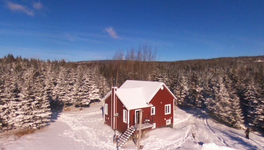 Close to the windmill farm + SKI - Saint-Luc-de-Bellechasse