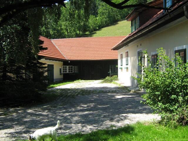 Bauernhof, 19.Jh, moderner Standard, viel Platz