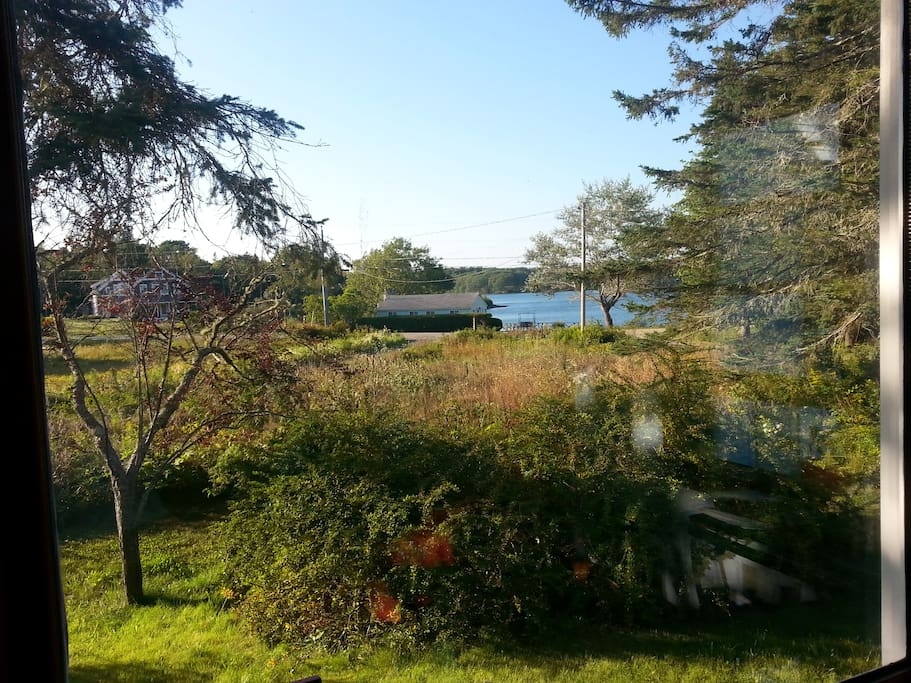 The view of Maplejuice Cove, out the back of the house. Two sided water view in Maine is basically unheard of.