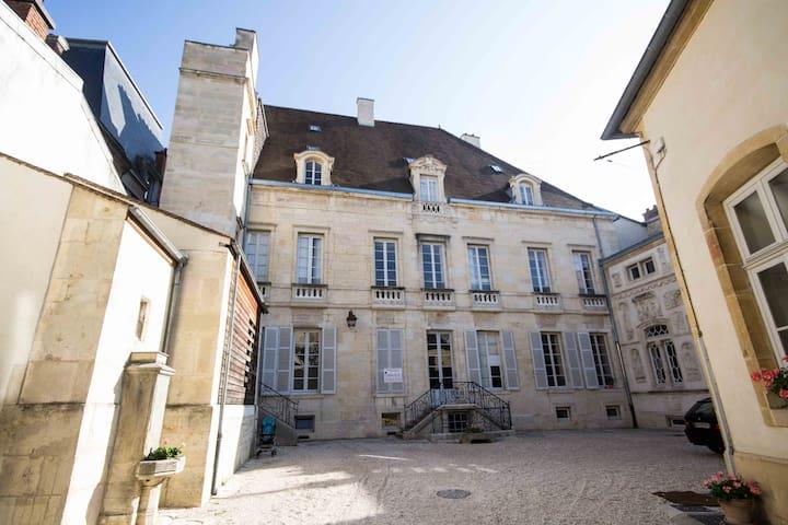 En plein Coeur historique avec parking - Dijon - Appartement