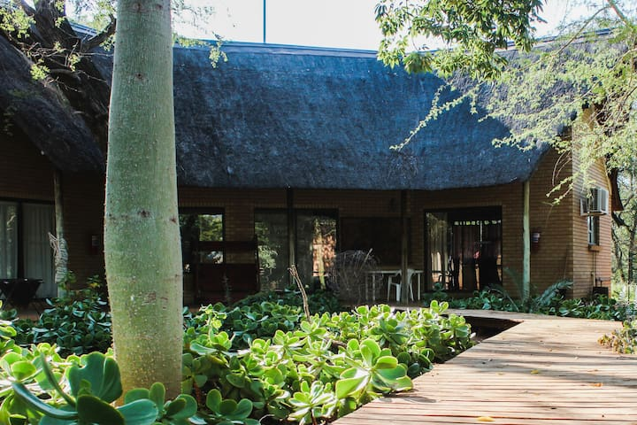 Zingela Nature Reserve - Leadwood Lodge  Chalet 2