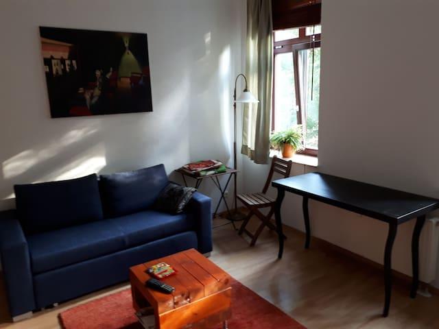 Apartment im Waldstraßenviertel