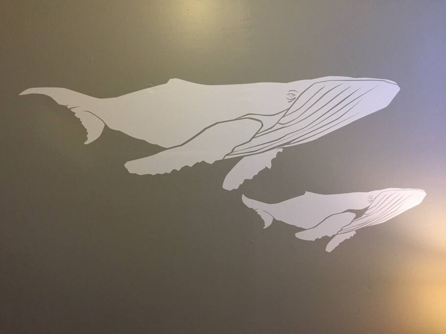We have whales on the walls!