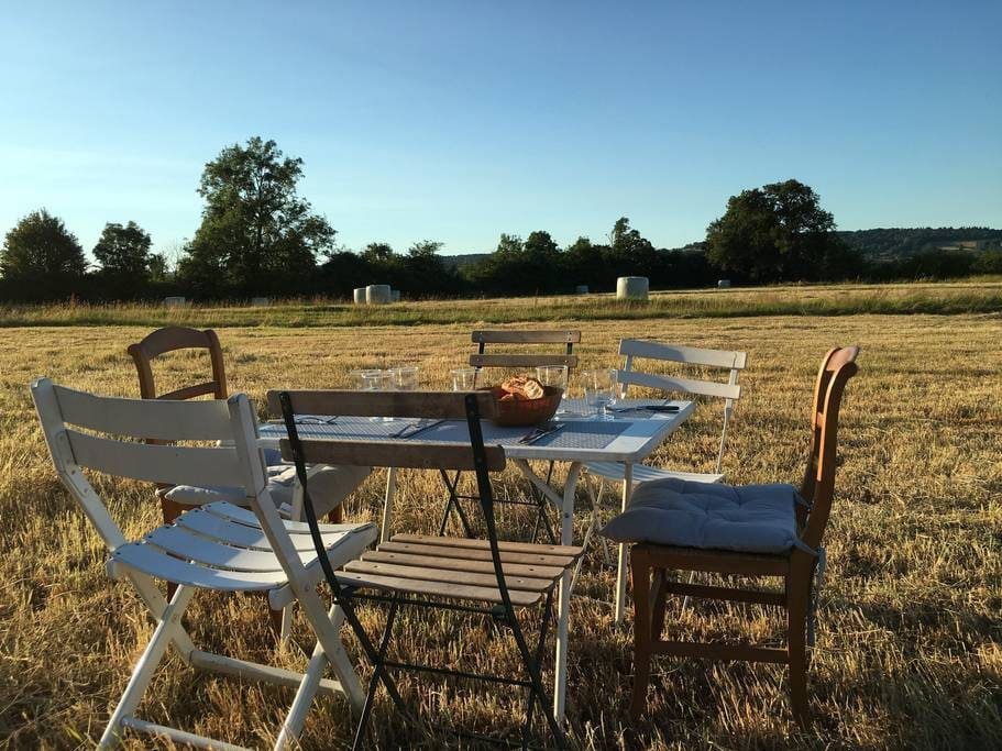 Petit déjeuner/Brunch estival derrière la maison Summer dinner in the field by the house