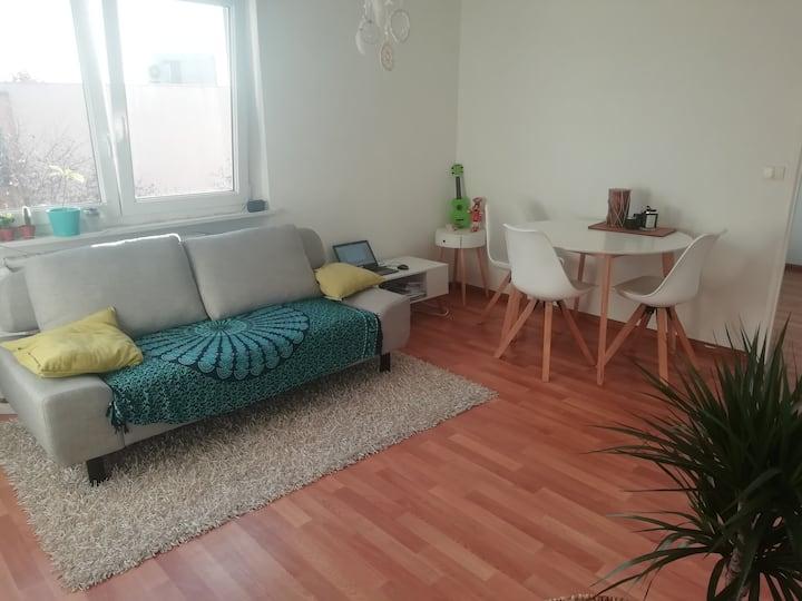 Appartement 1 pièce chaleureux et ensoleillé