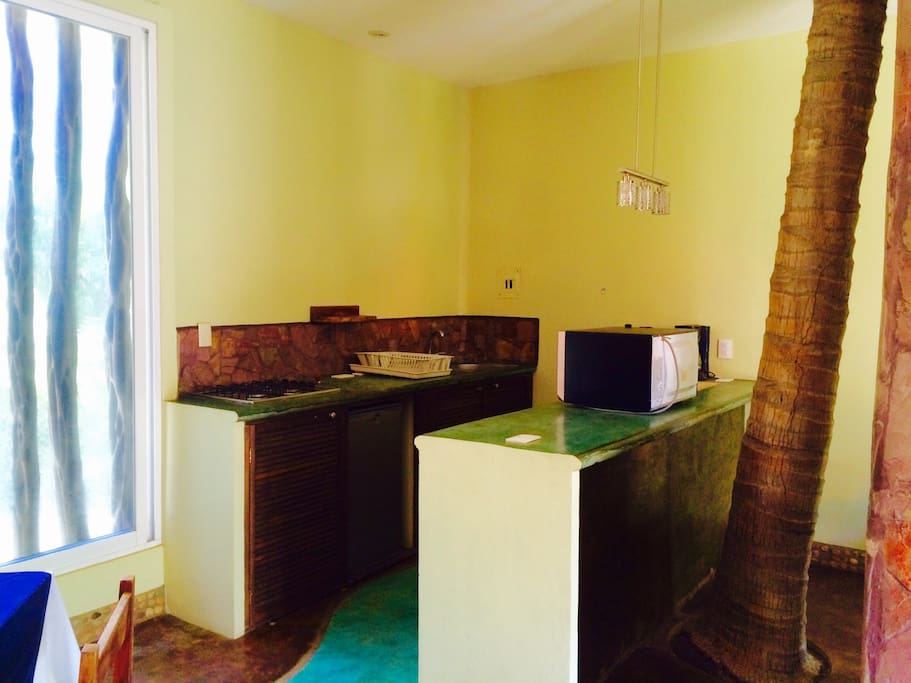 Kitchen and your own palm tree