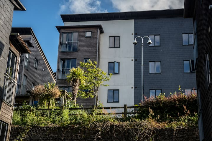 Large Glasney Flat (sleeps 14) on Penryn Campus