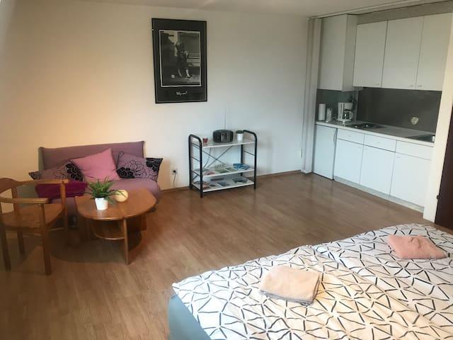 Nette Wohnung 40 qm , nahe Hbf, Öffis, Zentrum