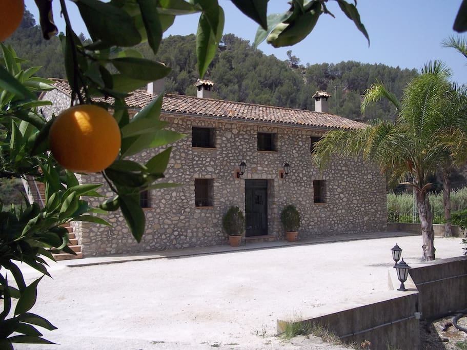 Country house surrounded by orange and lemon trees