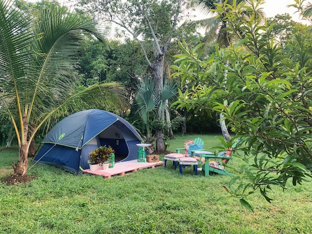 Countryside camping... welcome!