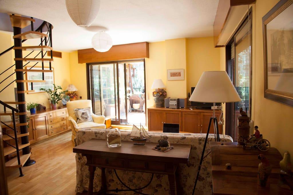 Confortable salón/ Living room