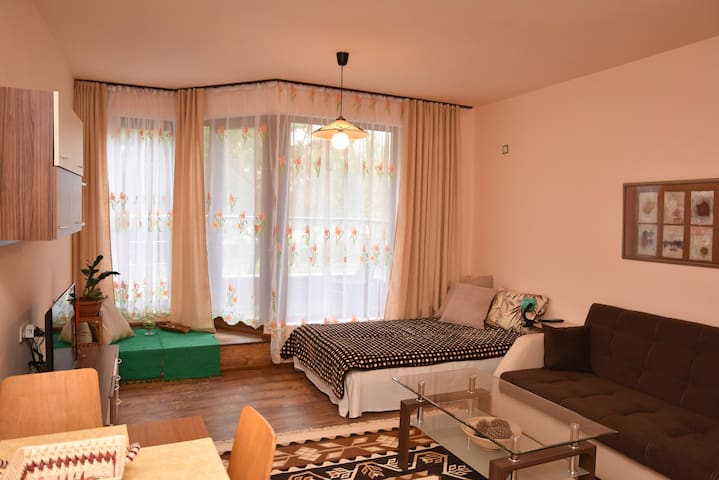 Apartments Plovdiv-one bedroom,old town view,parki