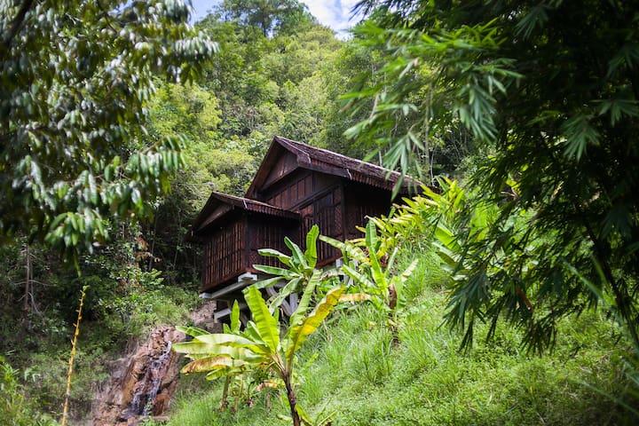 Puncak Rimba Villa Bukit Lata