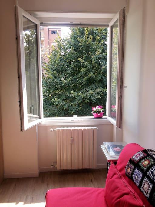 Affaccio su giardino finestra stanza ospiti
