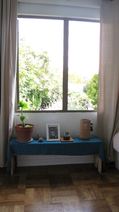 This will be your room, with a great view to the big yard, in a very quiet neighborhood, 30' to the center of Santiago, using subway train or bike (included).