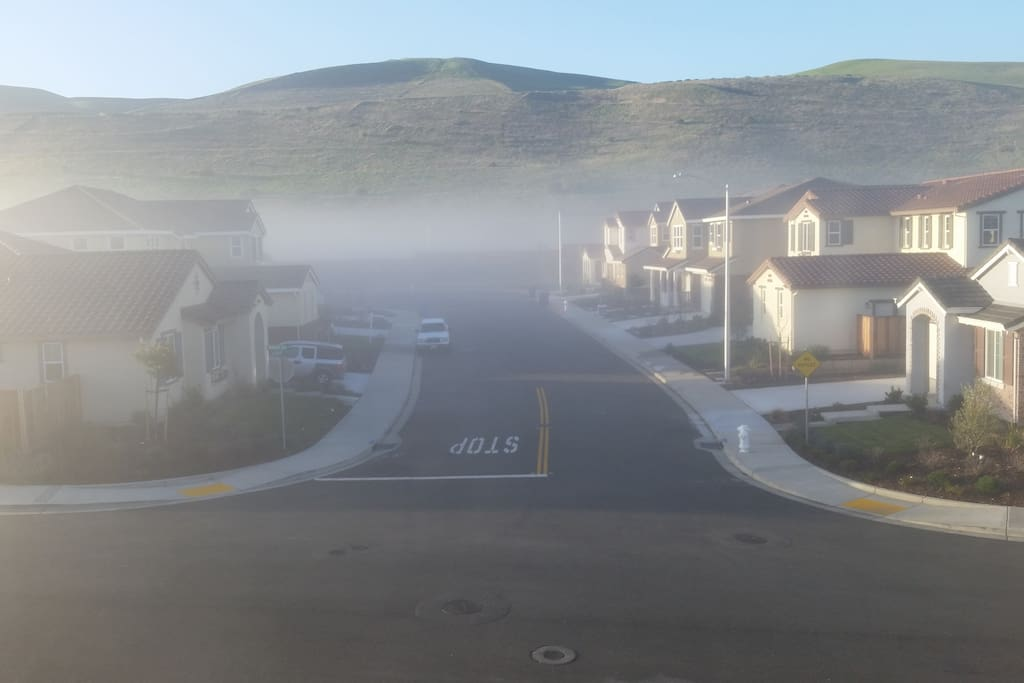Beautiful fog view from your bedroom