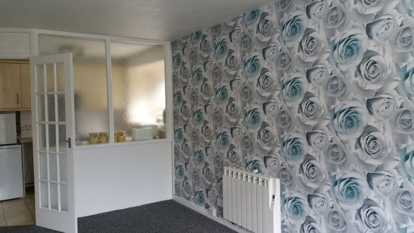 1 Bedroom spacious and Beautiful Flat, garden view - Leicester
