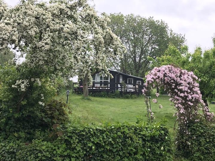 Træhus på Tåsinge, ved skov og Svendborgsund