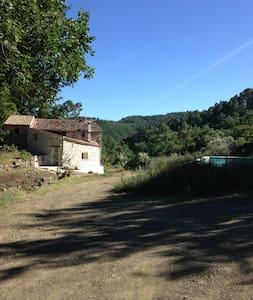 Mas cévenol au sein d'un domaine de 4 hectares - Saint-Brès - Дом