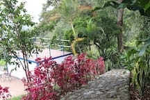 Colombian Traditional Coffee Farm Experience