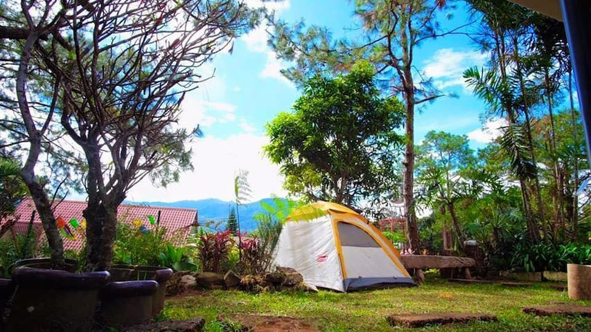 Camping | Alfonso's Campsite and Transient House