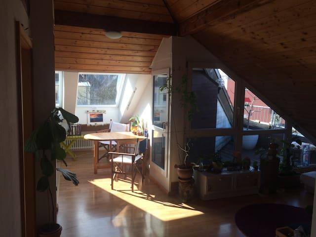 Sehr helle Dachgeschosswohnung mit Dachterrasse