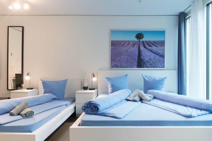 1.5 room Apartment Gletschergarten III