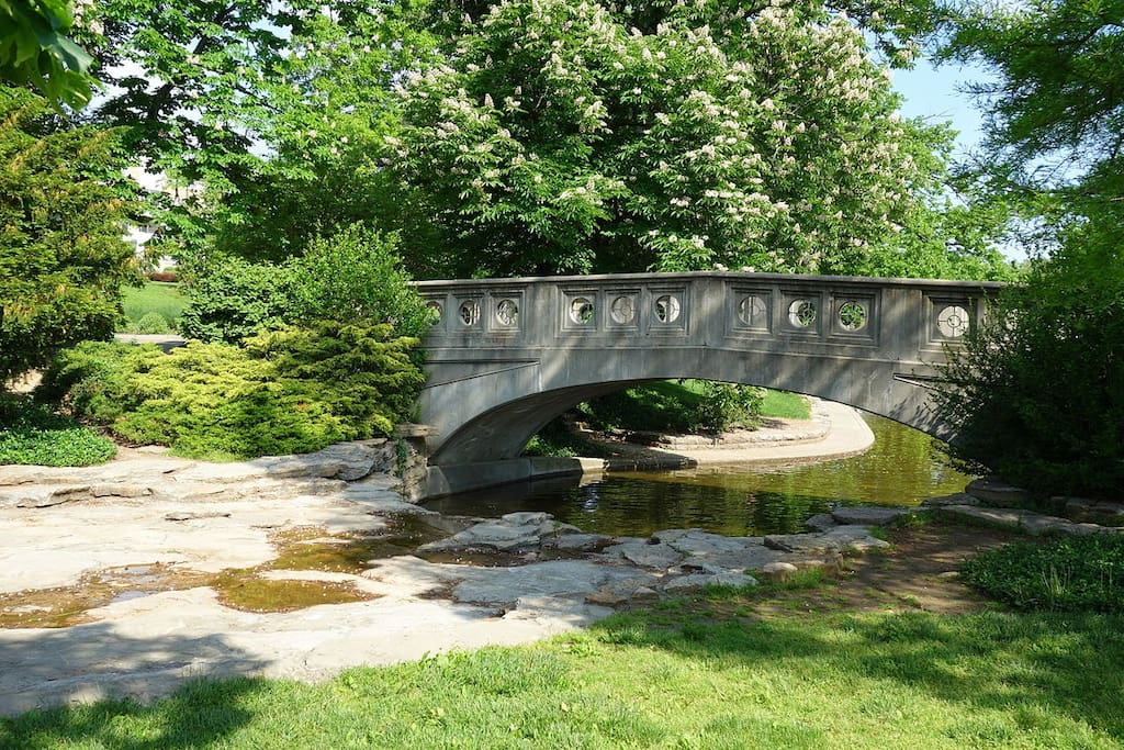 Bridge @ Eden Park