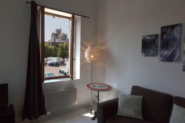 Duplex de charme ,une des plus belle vue d'Auxerre
