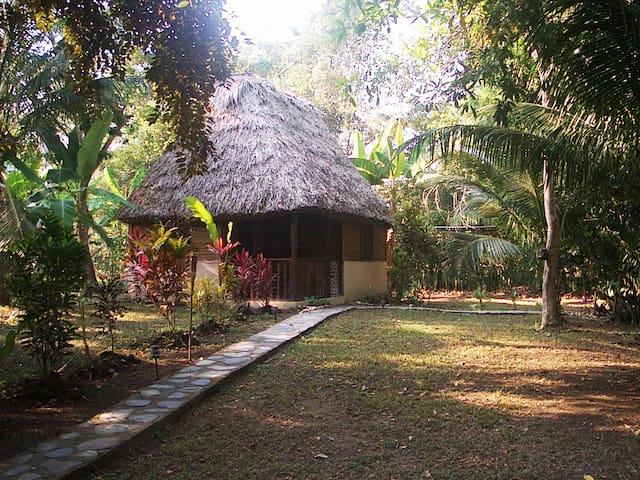Cohune Palms River Cabanas - Toucan Cabana