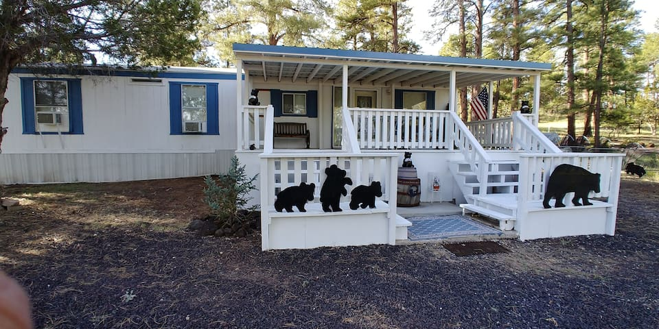 Beary Cozy Cottage Show Low