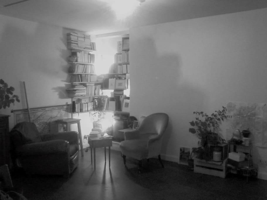Le coin salon/bibliothèque