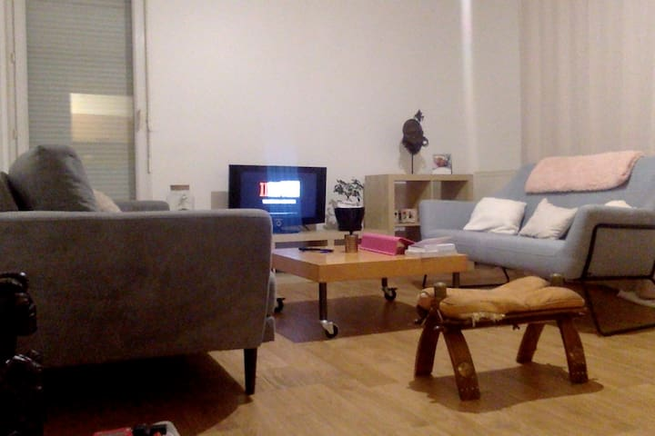 Appartement agréable sur Lille.
