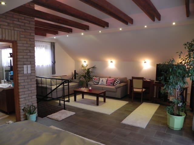 Sirály Apartman Miskolctapolca - Miskolctapolca - 獨棟