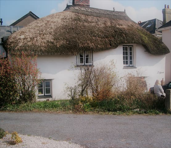 Charming thatched cottage in South Devon - Malborough - Dům