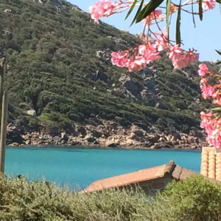 Tizzano (Corse du sud) rez de villa - plage à 50 m