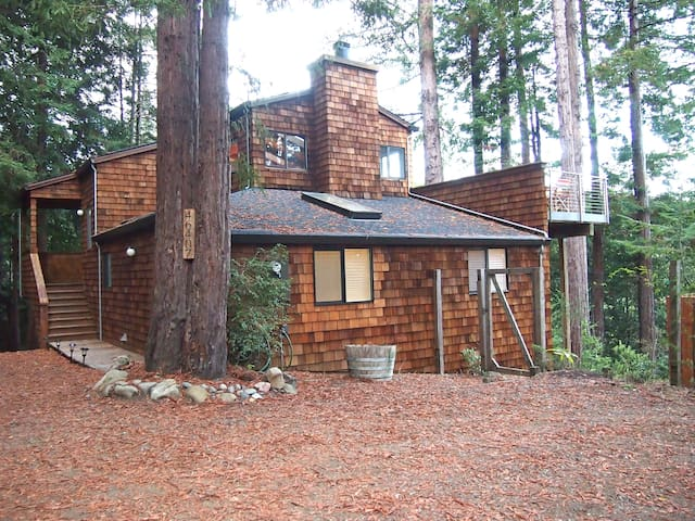 Canyon View Cabin in the Redwoods - Gualala - บ้าน