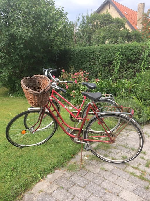 It is possible to rent two bikes for only 25kr (3,5 euro) per day. So you easy, quickly Can get out and experience Copenhagen