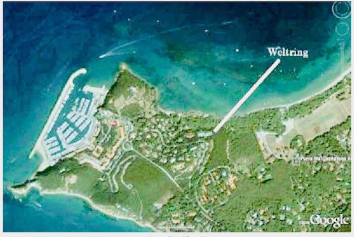 Mare e pineta a Punta Ala