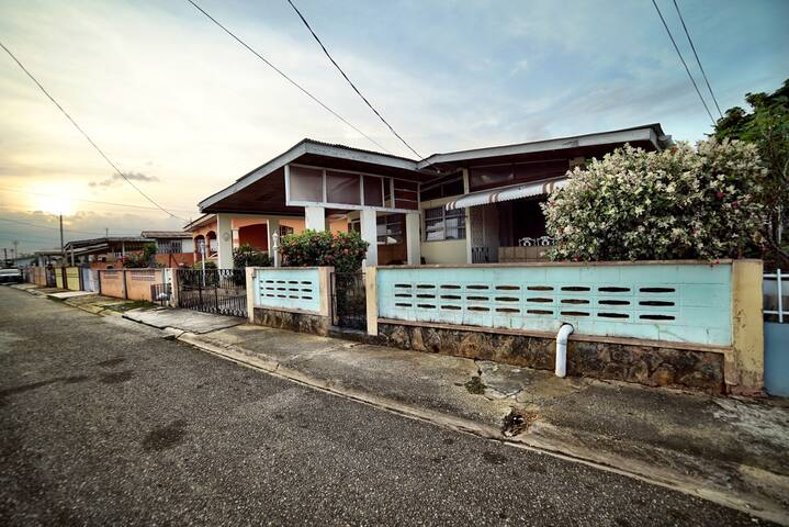 21 Dahlia Road - Macoya - House
