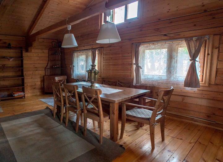 Уютный дом на берегу Московского моря