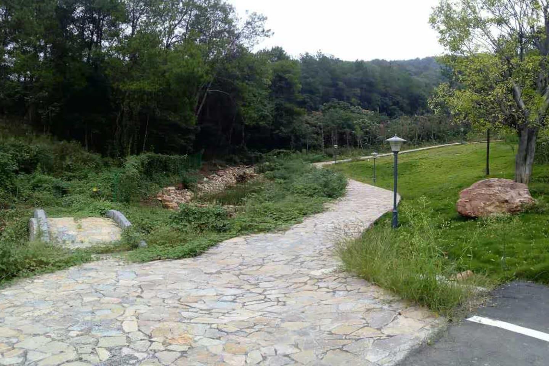 园区的漫步山道