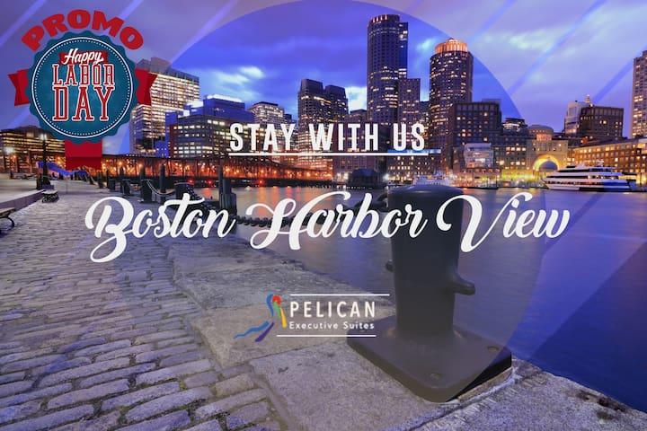 Boston Harbor View 1 BR Furnished Suite - Boston - Apartment